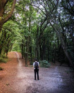 człowiek w lesie